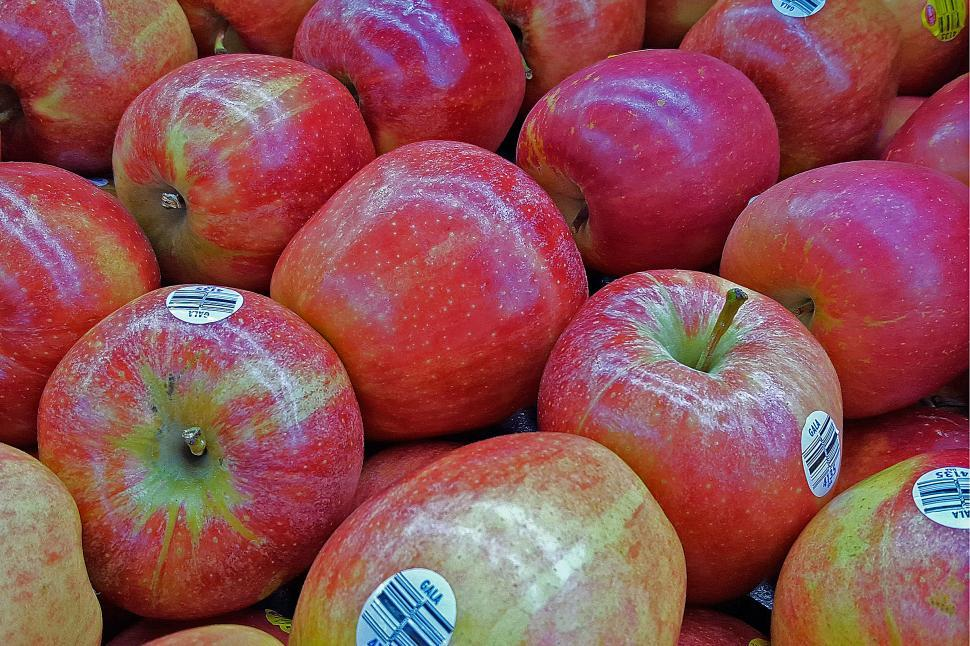 Download Free Stock HD Photo of Gala Apples Online