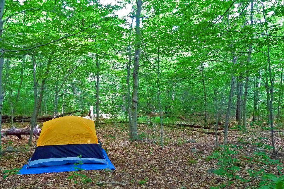 Download Free Stock HD Photo of Tent in the Woods Online