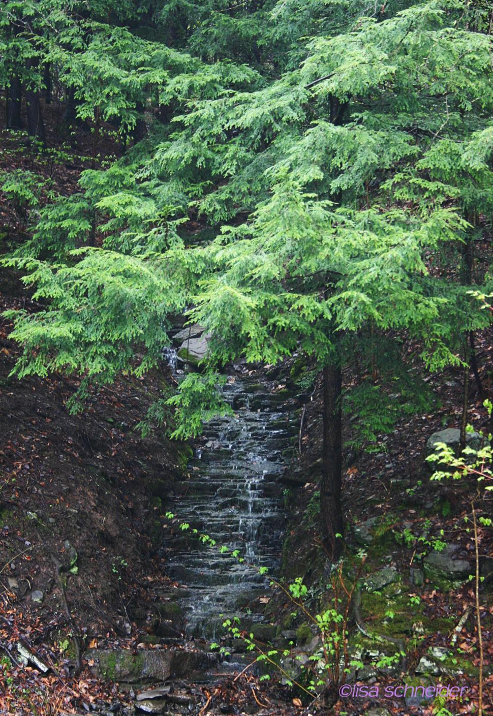 Download Free Stock HD Photo of My waterfalls Online