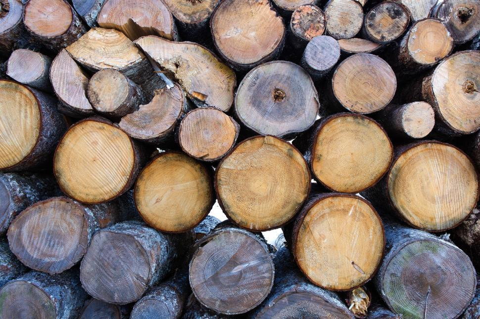 Download Free Stock HD Photo of Pile of wood logs Online