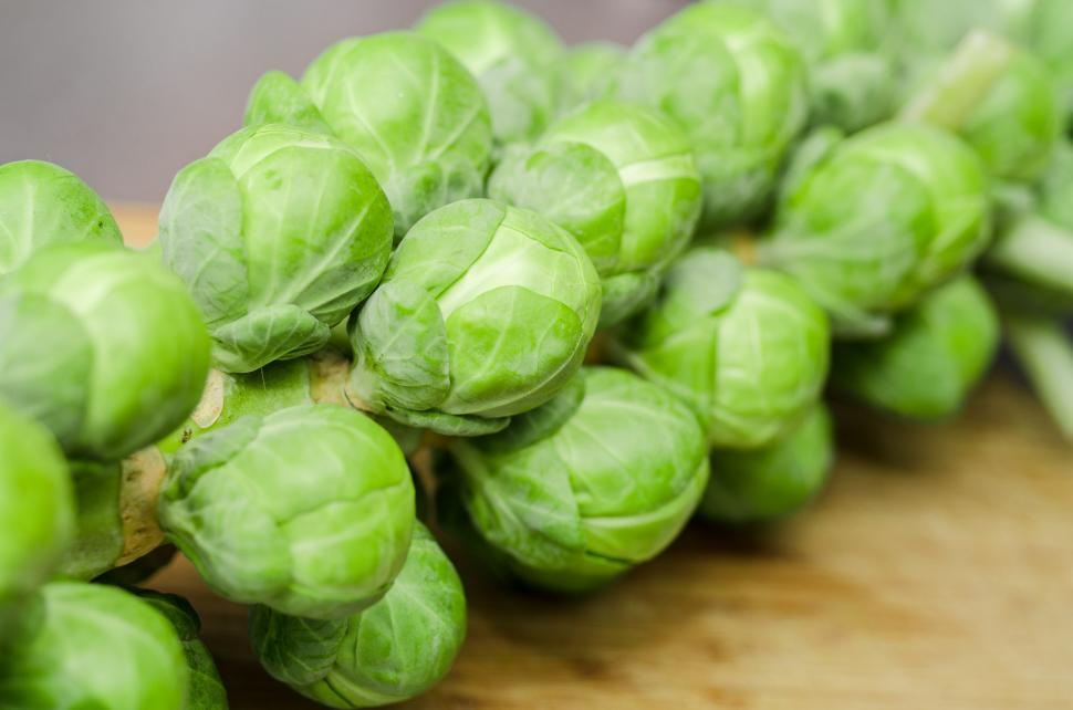 Download Free Stock HD Photo of Brussel sprouts Online