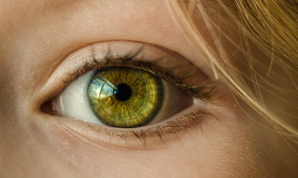 Download Free Stock HD Photo of Human eye Online