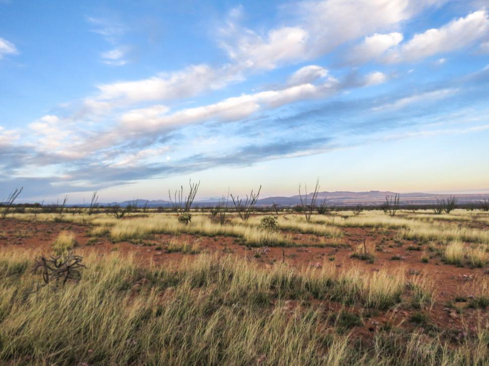 Download Free Stock HD Photo of Desert field Online