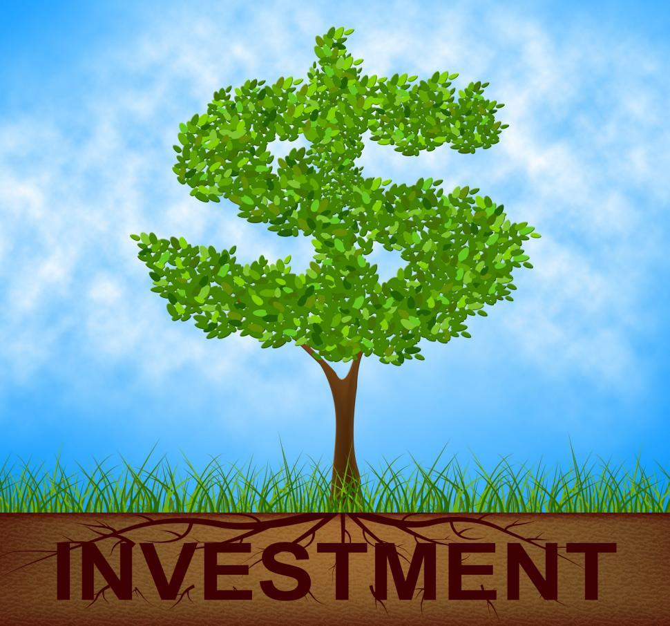 Download Free Stock HD Photo of Investment Tree Indicates American Dollars And Branch Online