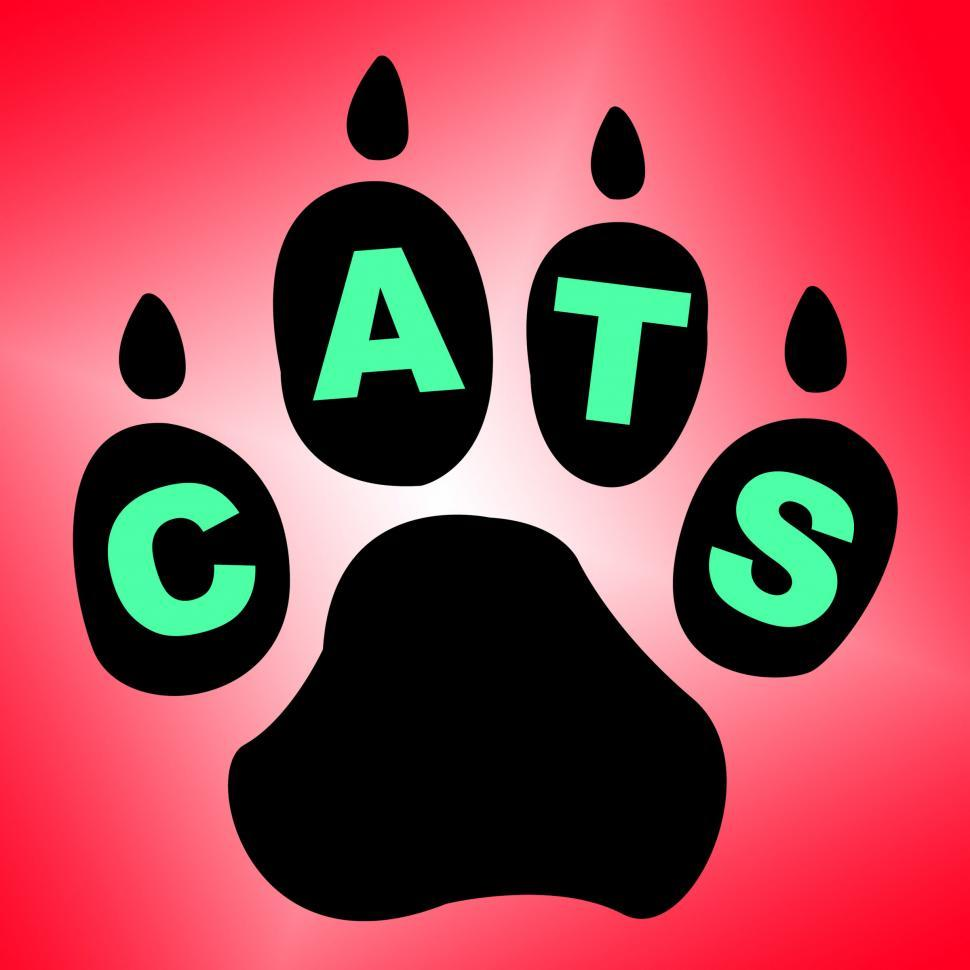 Download Free Stock HD Photo of Cats Paw Shows Pet Services And Feline Online