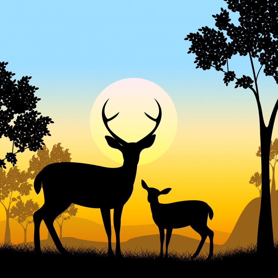 Download Free Stock HD Photo of Deer Wildlife Indicates Safari Animals And Evening Online