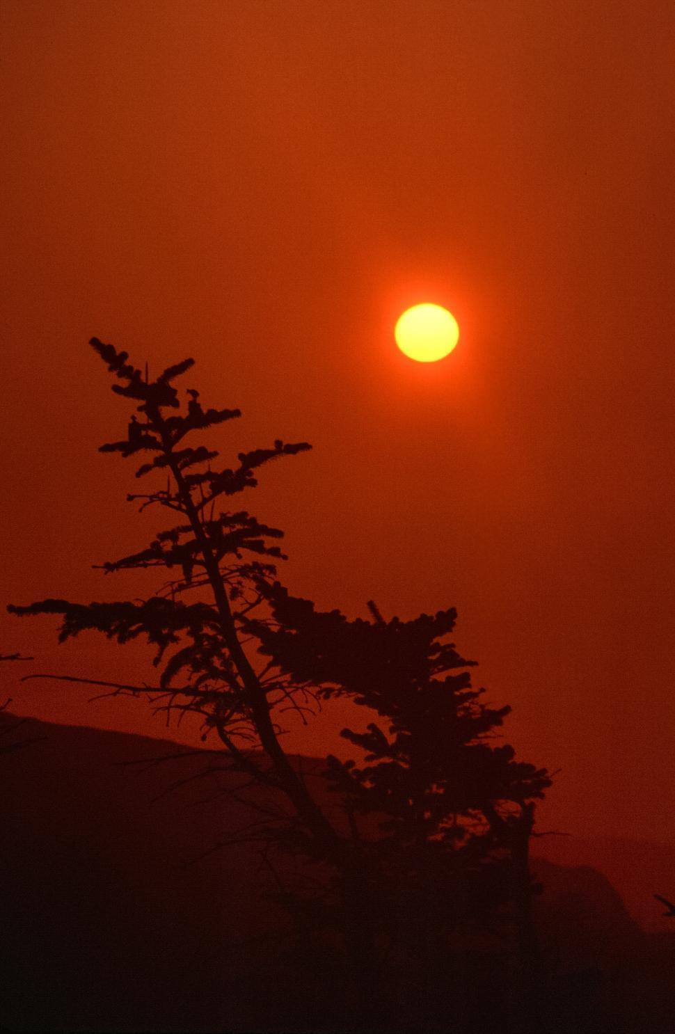 Download Free Stock HD Photo of Deep orange sunset Online
