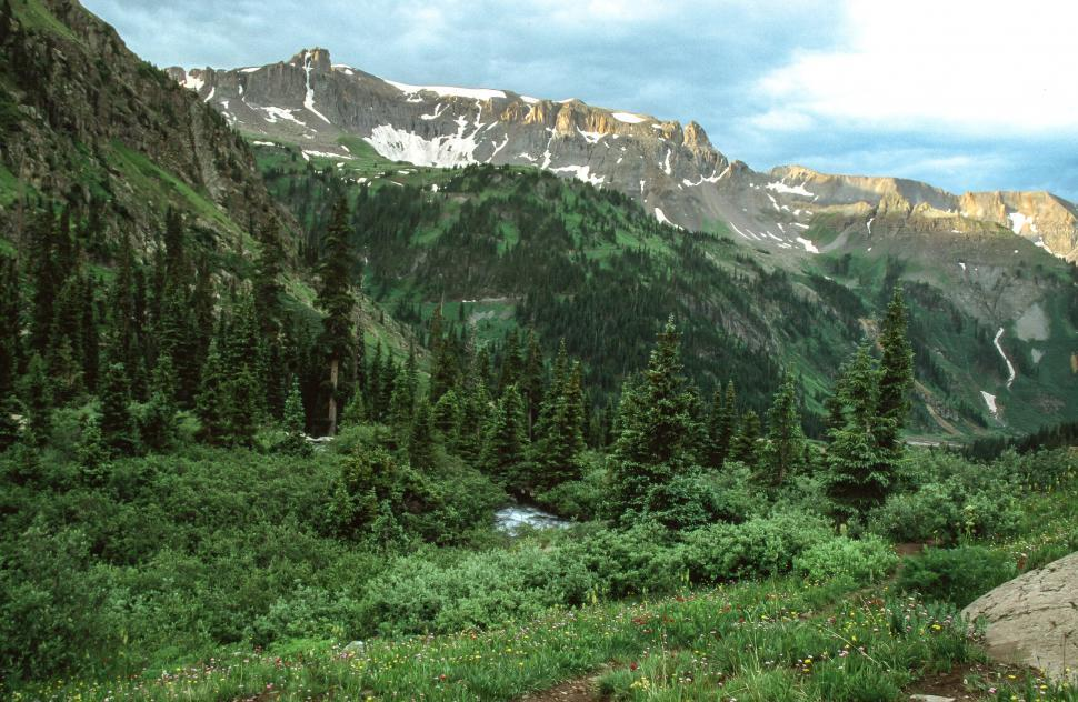 Download Free Stock HD Photo of Uncompahgre National Forest Online