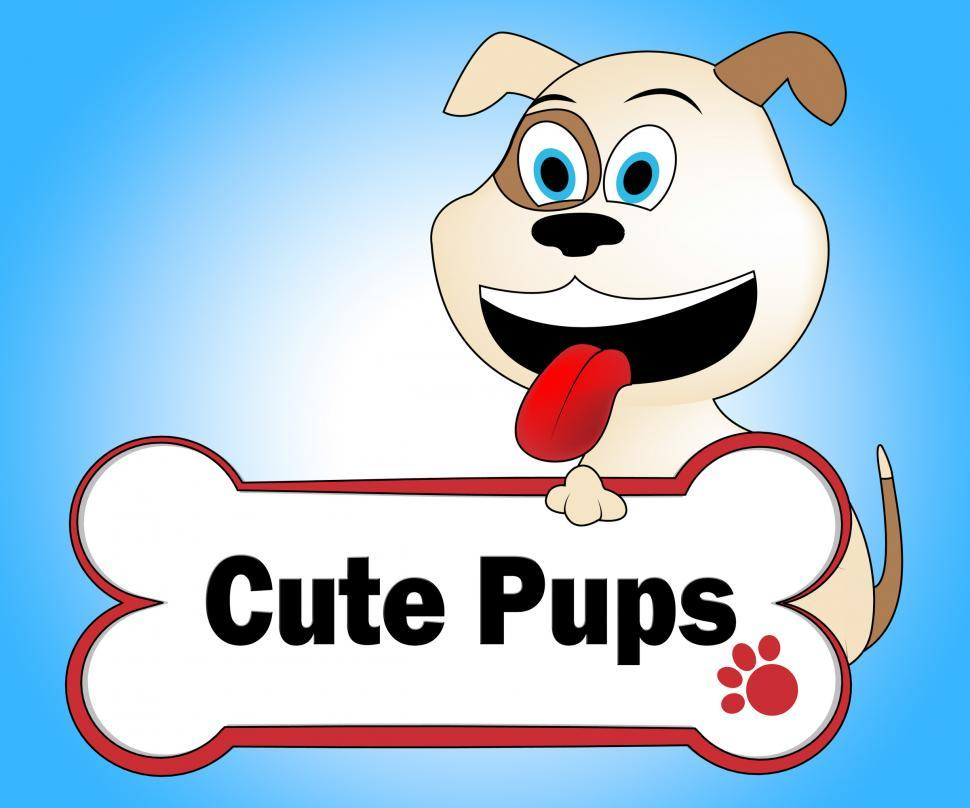 Download Free Stock HD Photo of Cute Puppies Represents Pretty Dogs And Pets Online