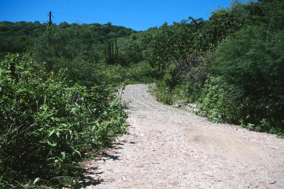 Download Free Stock HD Photo of Dirt and cobblestone road Online