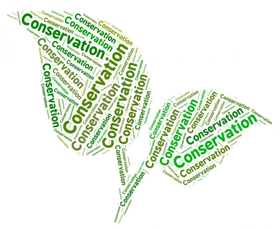 Download Free Stock HD Photo of Conservation Word Represents Eco Friendly And Ecology Online