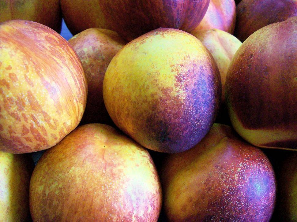 Download Free Stock HD Photo of Nectarines Online