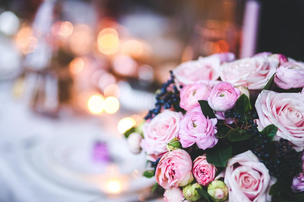 Free Stock Photo Of Flower Pink Bokeh Bouquet Closeup Flowers Flower Bouquet Decoration Pink Flowers Celebration Gift Yellow Download Free Images And Free Illustrations
