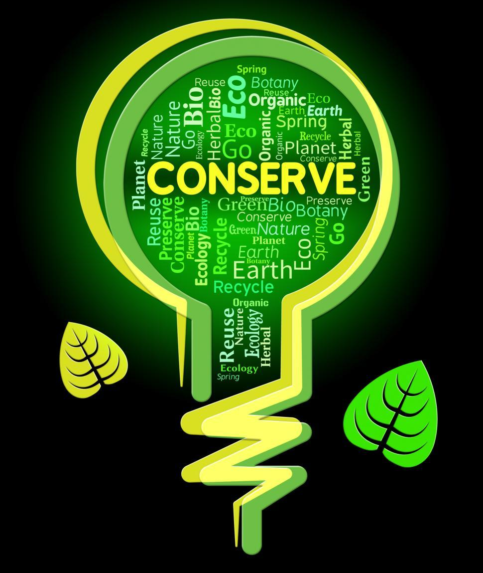 Download Free Stock HD Photo of Conserve Lightbulb Shows Sustainable Conserving And Protecting Online