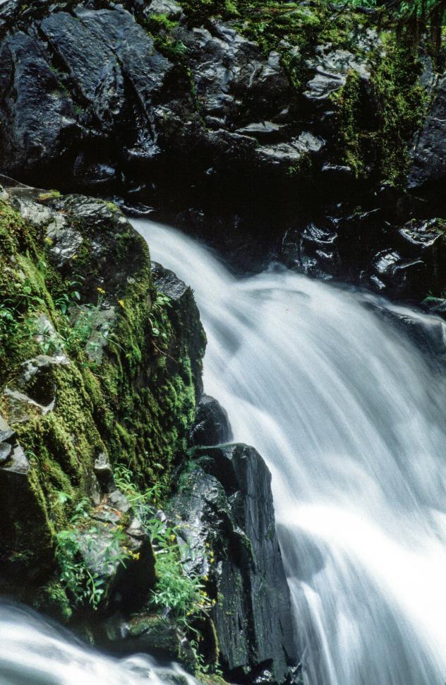Download Free Stock HD Photo of Sol Duc Falls Online