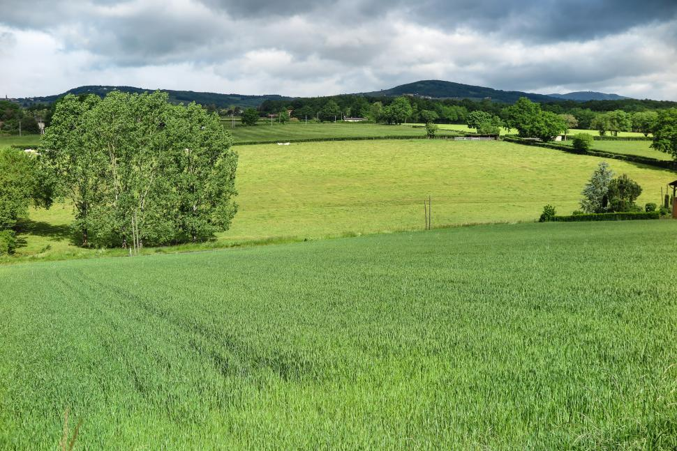 Download Free Stock HD Photo of Green fields in hills Online