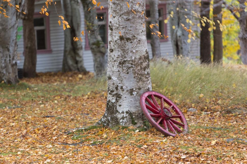 Download Free Stock HD Photo of Wagon wheel  Online