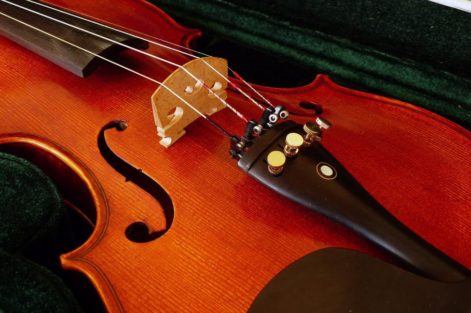 Download Free Stock HD Photo of Student Violin Online