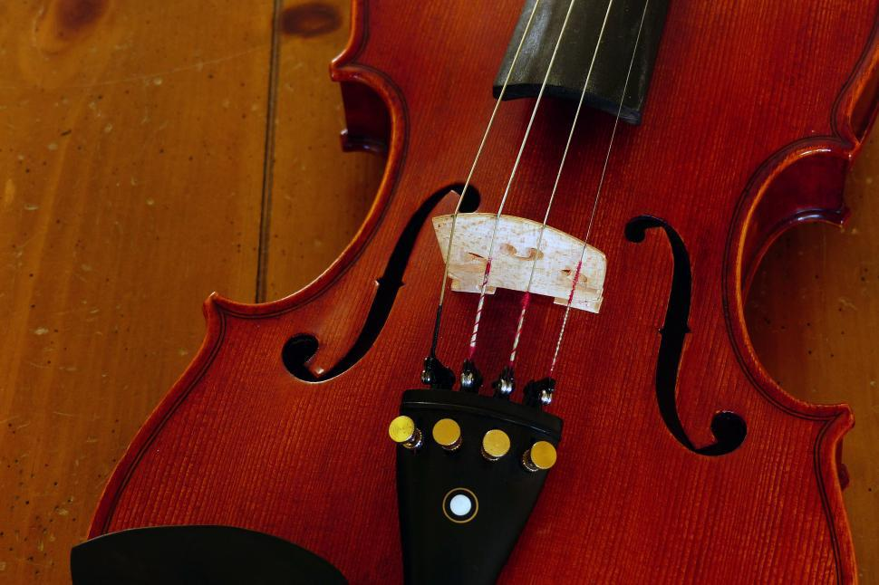 Get Free Stock Photos of Violin F Holes and Bridge Online