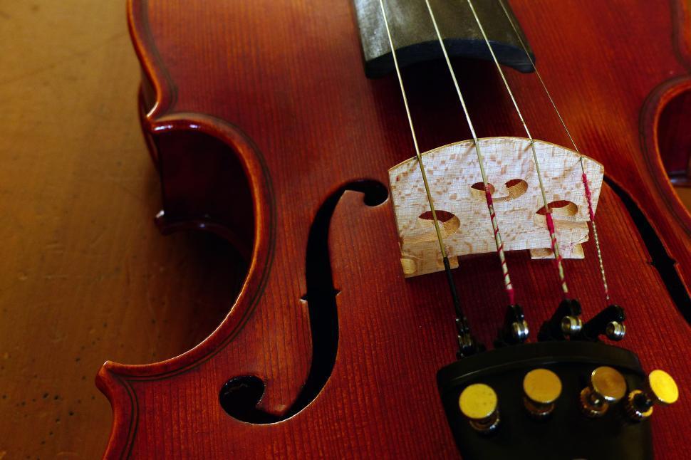 Download Free Stock HD Photo of Violin Bridge Online