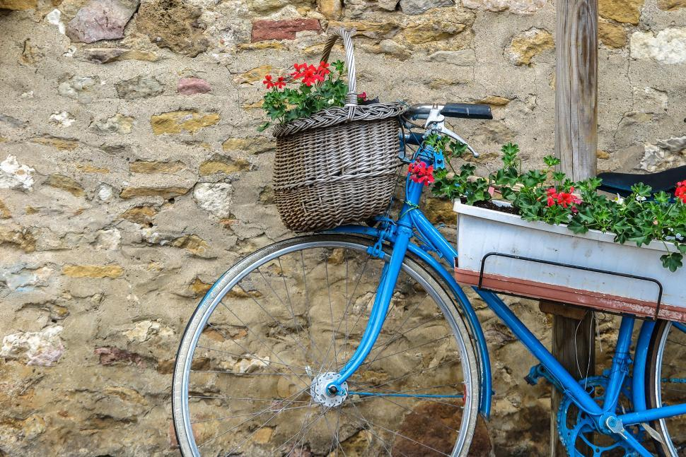 Download Free Stock HD Photo of Bicycle Planter Online