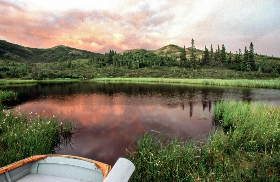 Download Free Stock HD Photo of Pond in Denali National Park Online