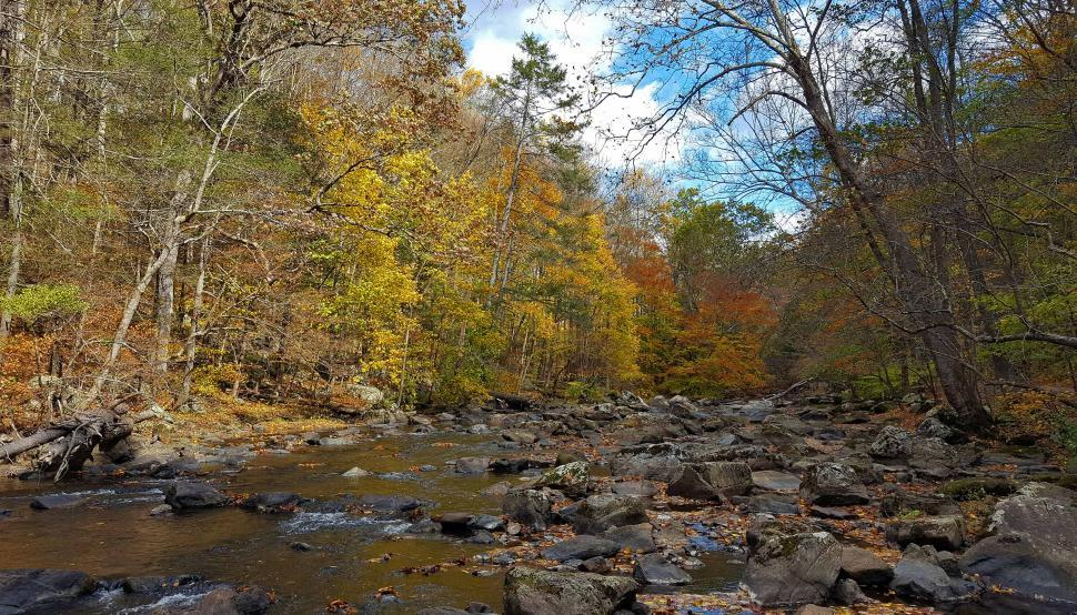 Download Free Stock HD Photo of Rocks in the Raritan River Online