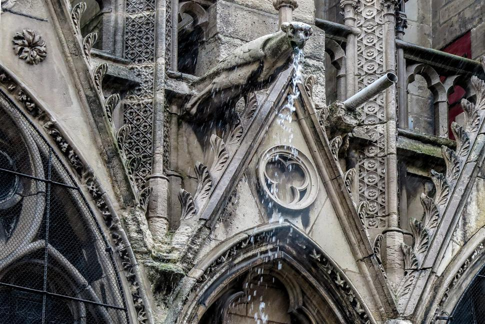 Download Free Stock HD Photo of Skupper at Notre Dame Online