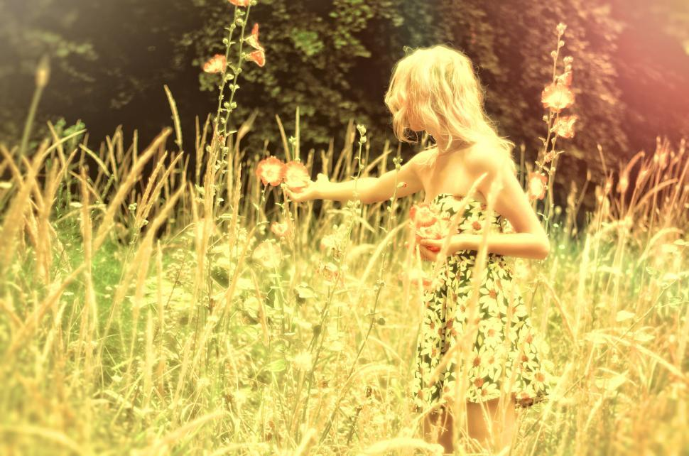 Download Free Stock HD Photo of Hazy Vintage Looks - Girl Collecting Flowers Online