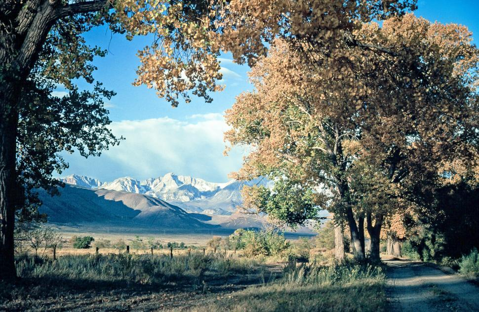 Download Free Stock HD Photo of Inyo National Forest Online