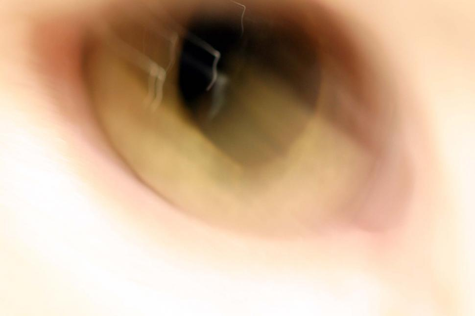 Download Free Stock HD Photo of Blurry cat eye Online