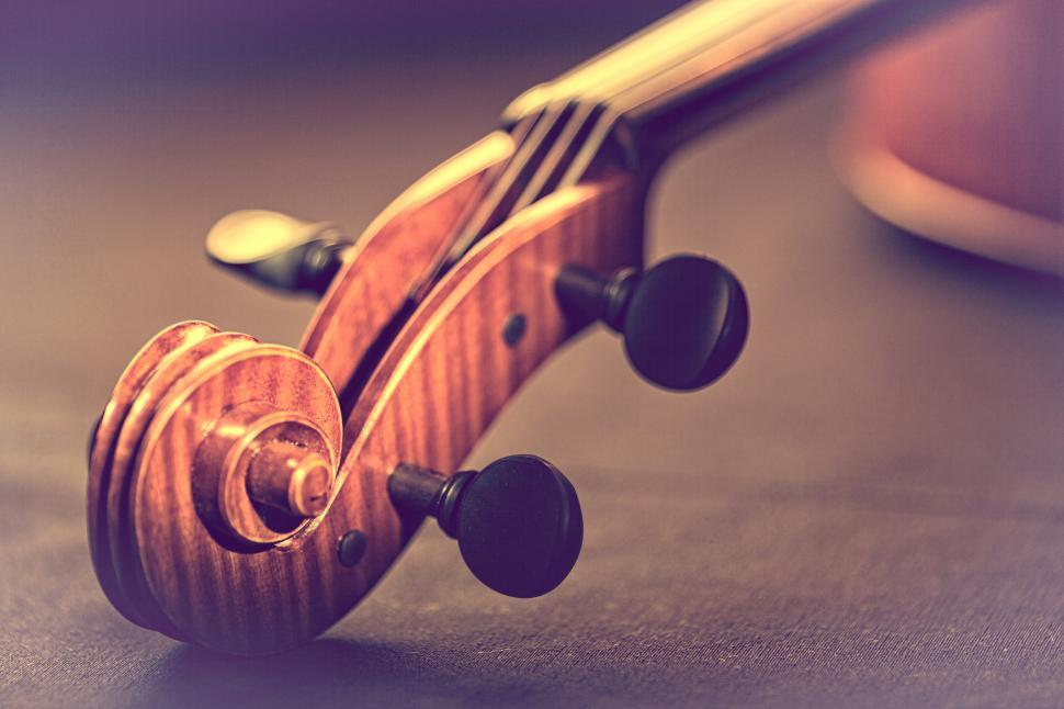 Download Free Stock HD Photo of Violin - Scroll and Pegbox Close-Up - Retro Looks Warm Colors Online