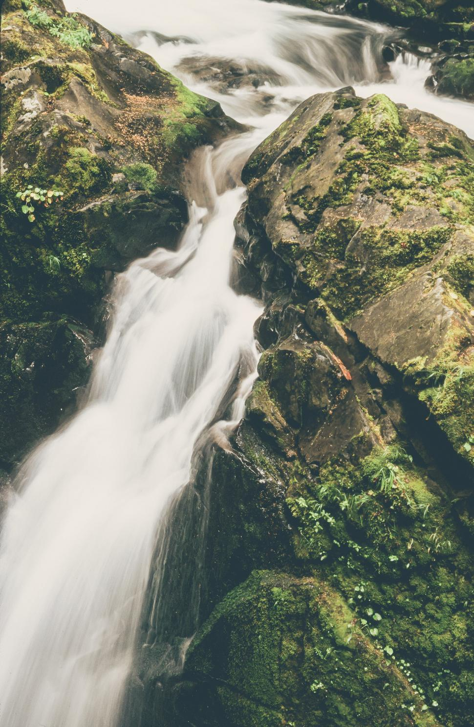 Download Free Stock HD Photo of Detail at Sol Duc Falls Online