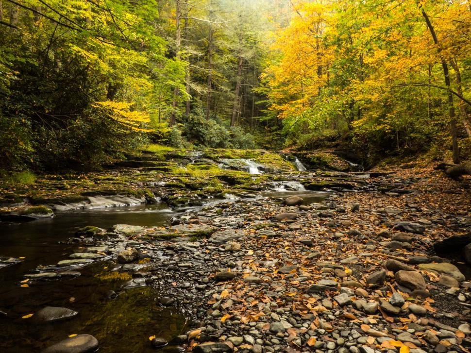 Download Free Stock HD Photo of Stream Water Cascades  Online