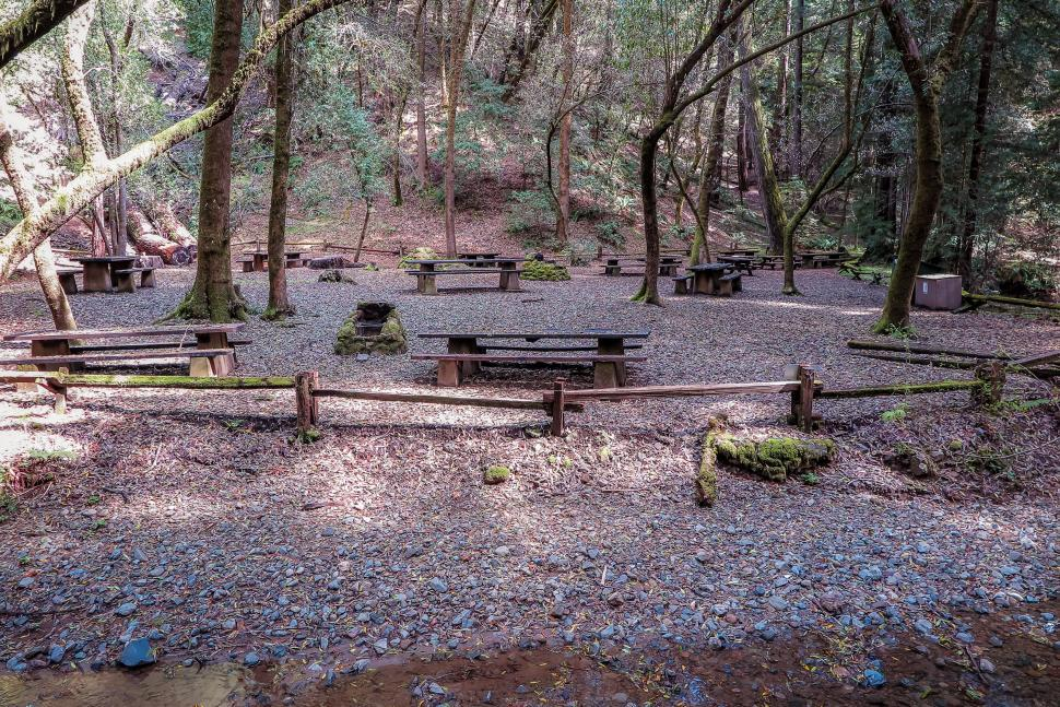 Download Free Stock HD Photo of Picnic area in the forest Online