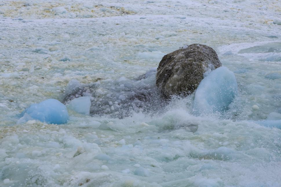 Download Free Stock HD Photo of Ice and Rocks Online