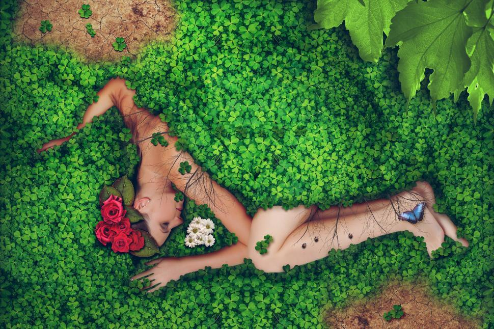 Download Free Stock HD Photo of Covered in clover Online