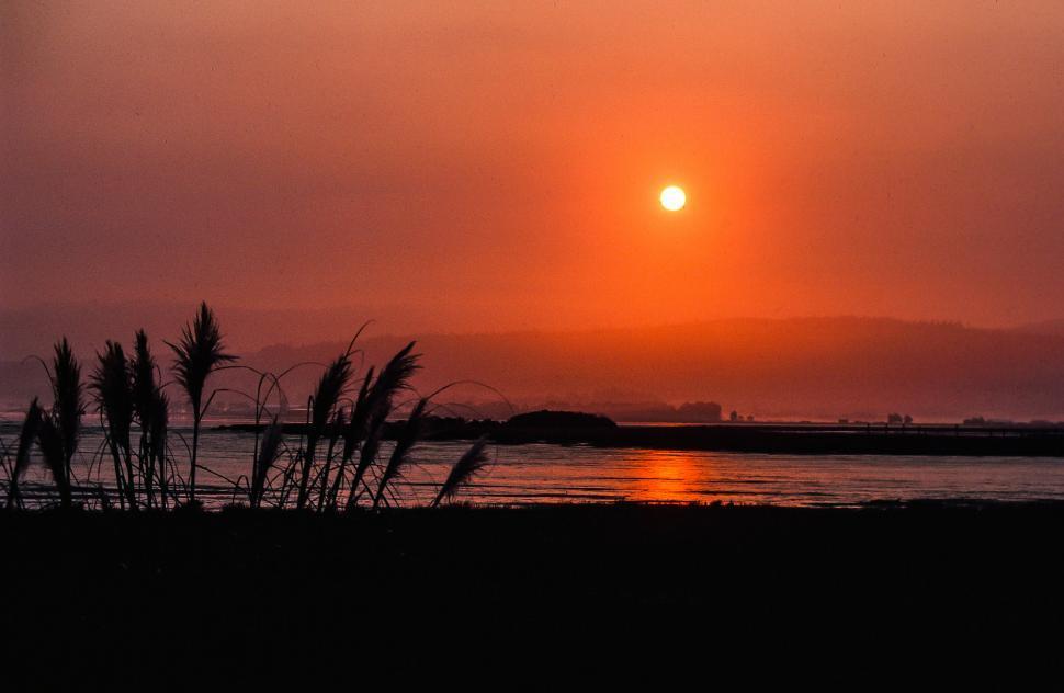 Download Free Stock HD Photo of Orange Beach Sunset Online