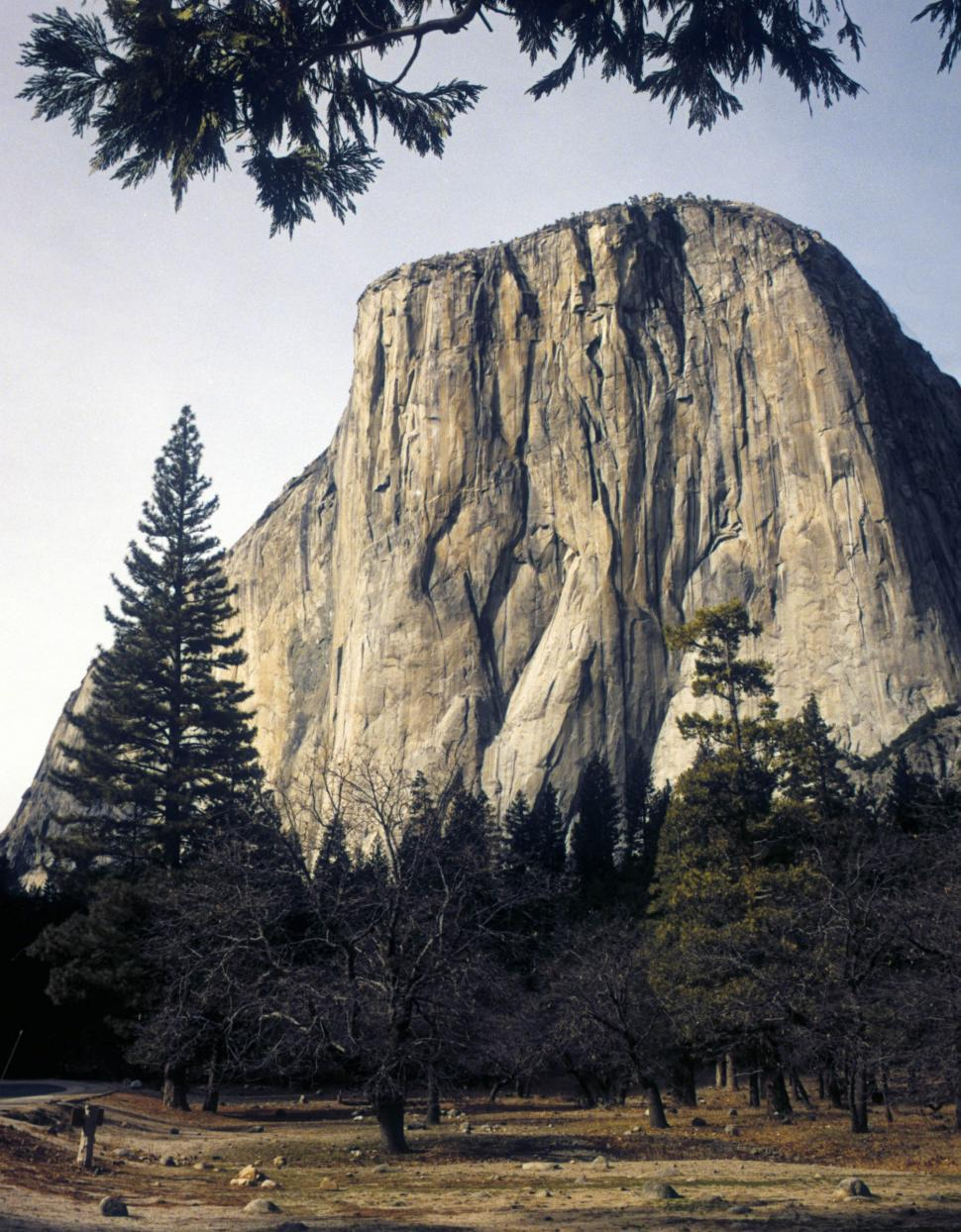 Download Free Stock HD Photo of el capitan in yosemite Online