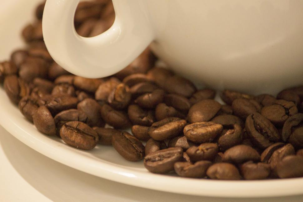 Download Free Stock HD Photo of Coffee beans in cup Online