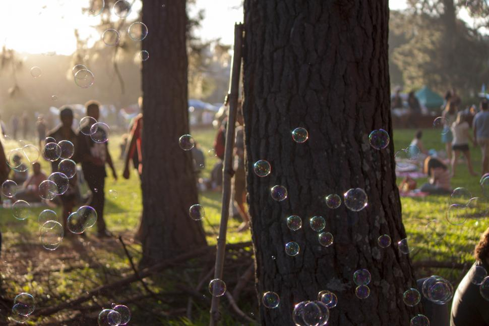 Download Free Stock HD Photo of Bubbles in the picnic park Online