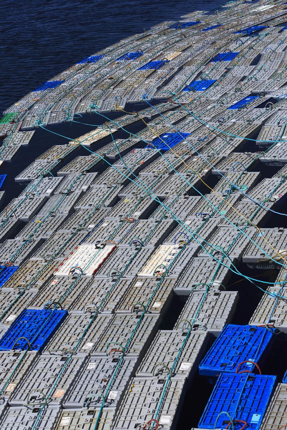 Download Free Stock HD Photo of lobster pens Online