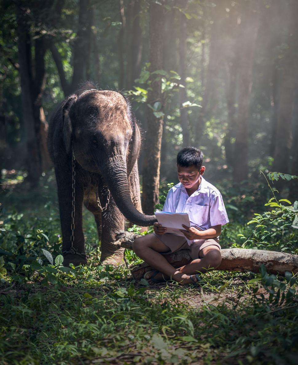 Download Free Stock HD Photo of Kid Studying Online