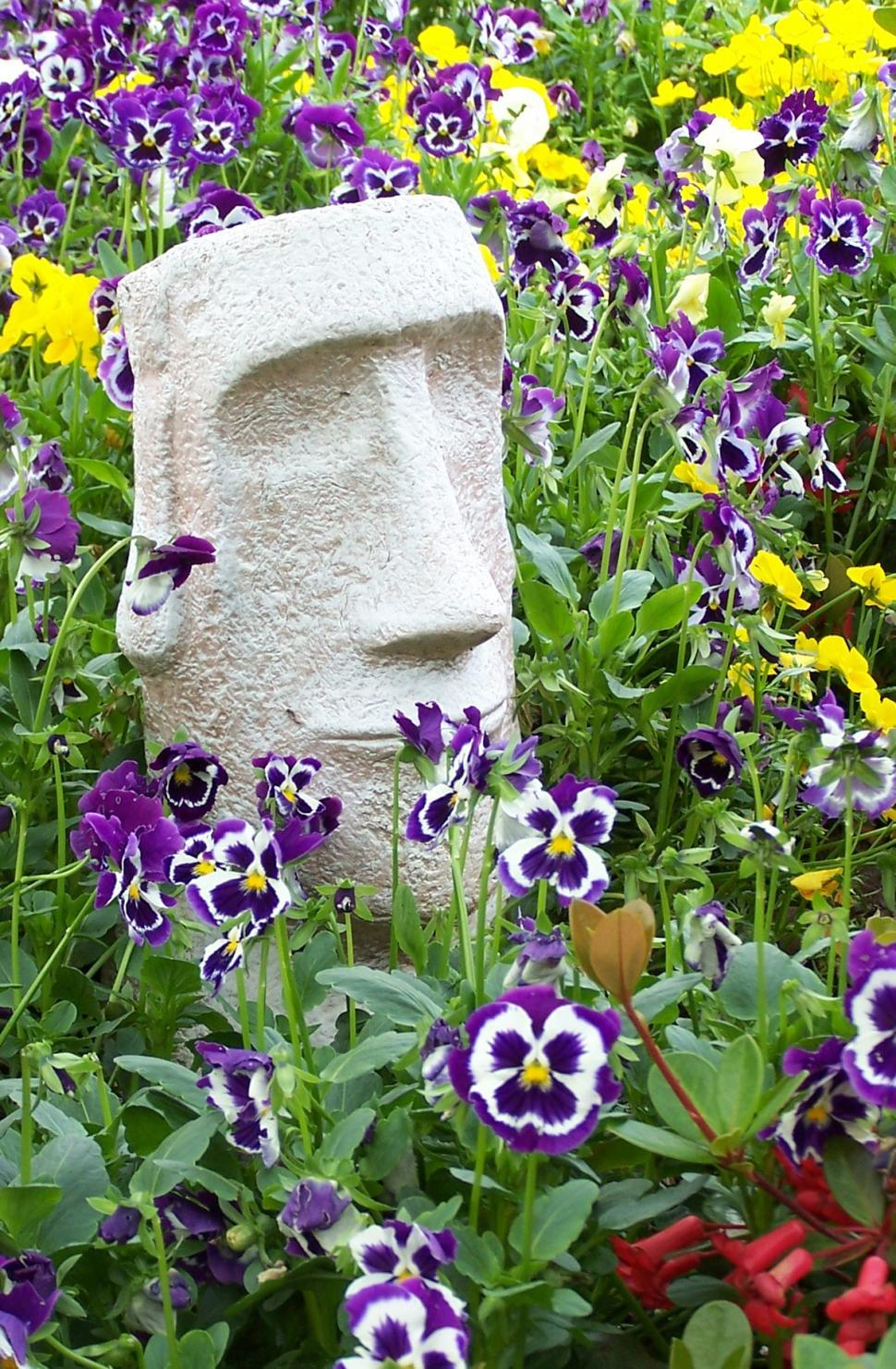 Download Free Stock HD Photo of A touch tribal among the pansies Online