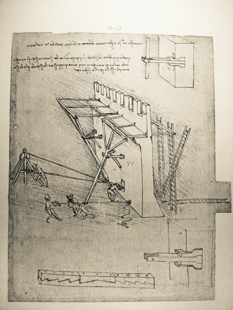 Download Free Stock HD Photo of Leonardo da Vinci drawing Online