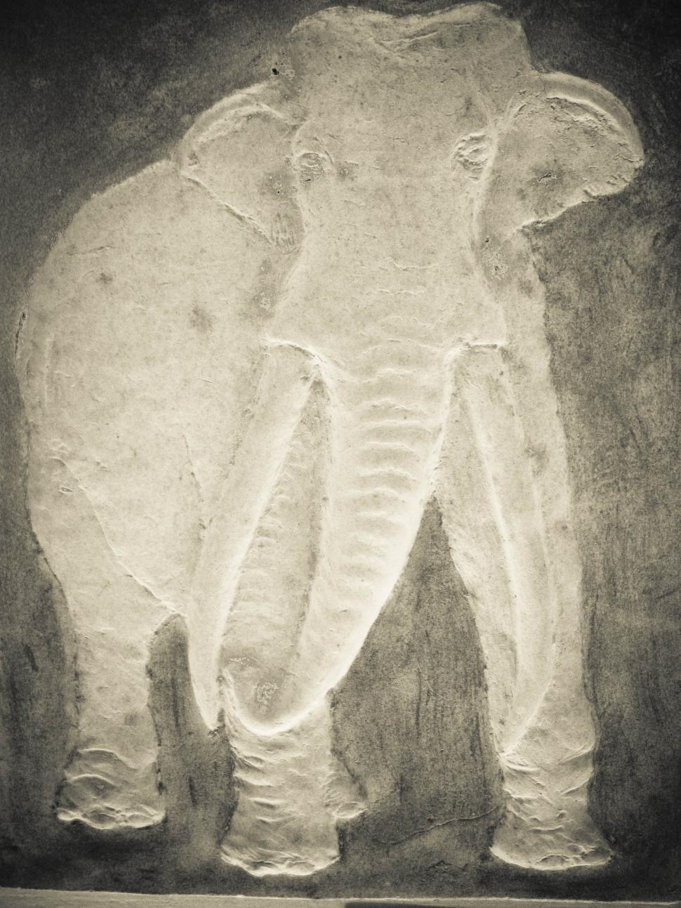 Download Free Stock HD Photo of mammoth Online