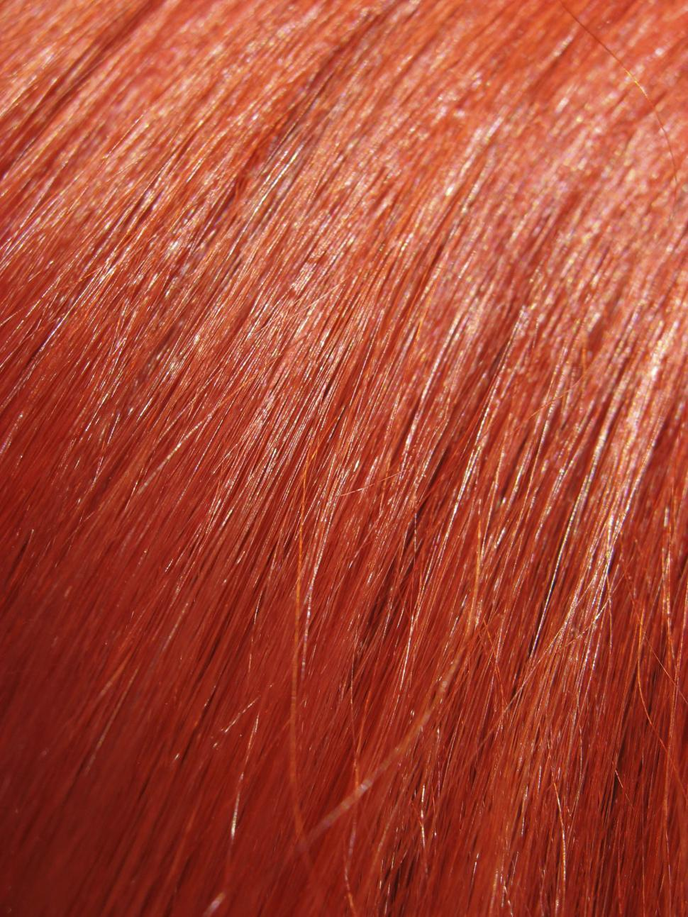 Download Free Stock Photo of red hair