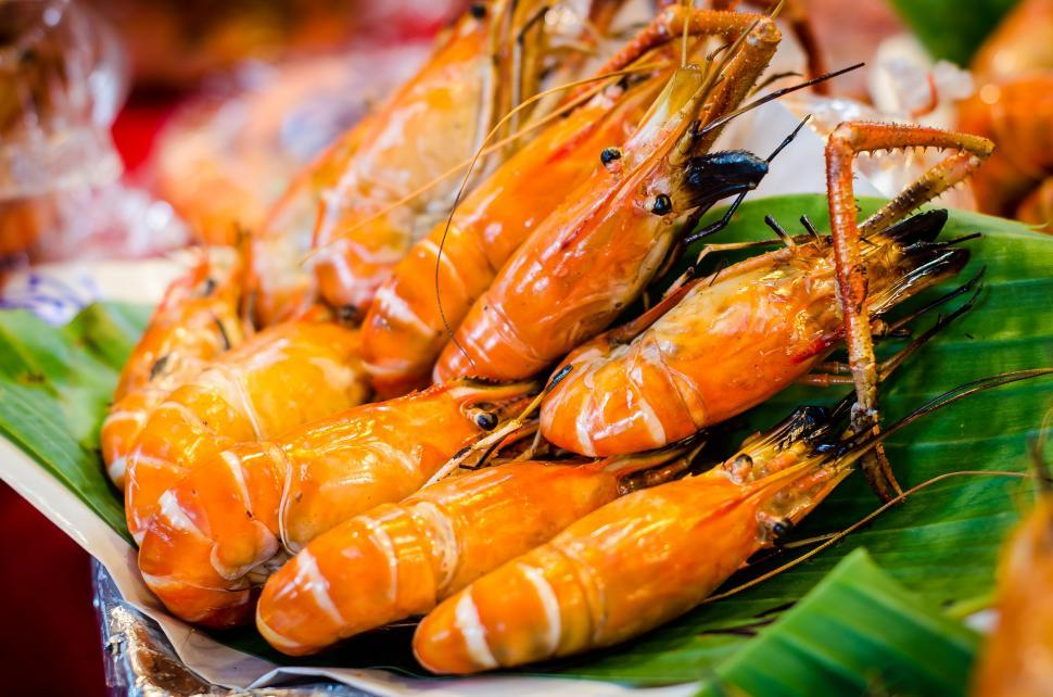 Download Free Stock HD Photo of Shrimp  Online