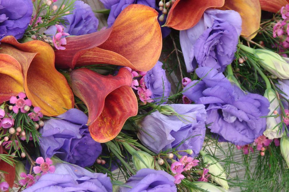 Download Free Stock Photo of Purple and Red Bouquet