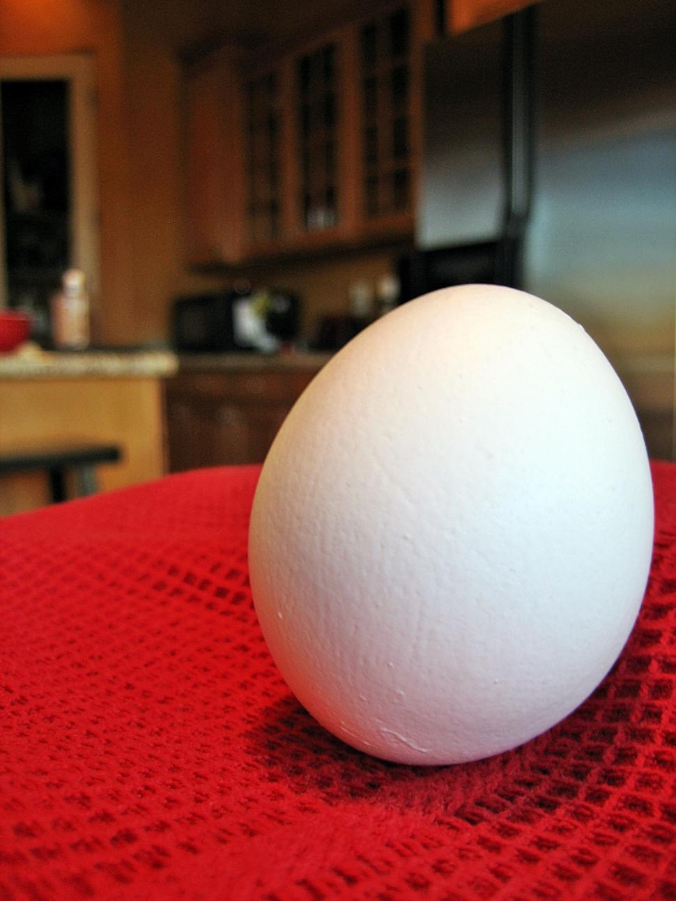 Download Free Stock HD Photo of Egg in Kitchen Online